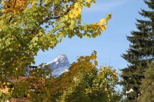 Herbstkulisse